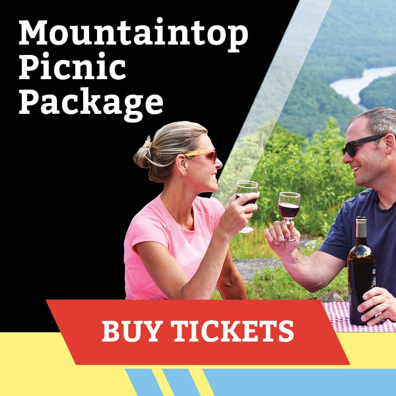 Mountaintop Picnic Package