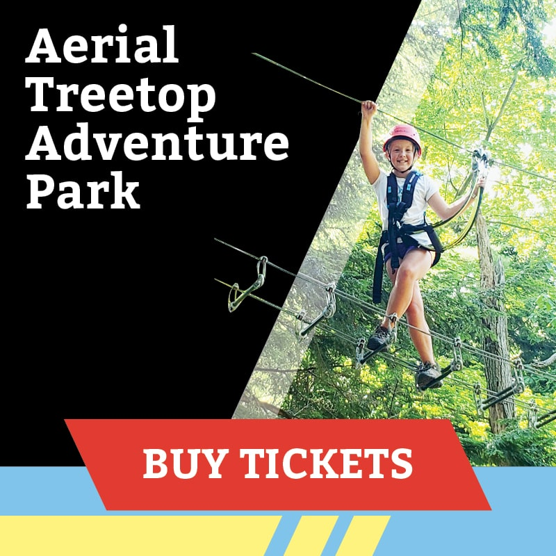 Aerial Treetop Park
